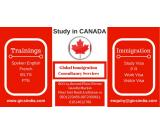 Global Immigration Consultancy Services