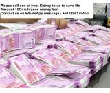 Opportunity to donate your kidney for money