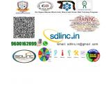 Six sigma training in sdlinc 9600162099