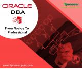 Best Oracle Database SQL PL/SQL Training Course in, Pune
