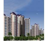 Prateek Canary in Sector 150 Projects in your Budget Call 7702_770_770