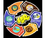 Enhance Your Skill with The Best Hadoop Institute in Delhi NCR