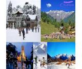Shimla Honeymoon Package by Car