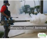 TechSquadTeam provides reliable mosquito control services in Bangalore