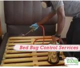 Non-toxic and eco-friendly bed bug control services in Bangalore with TechSquadTeam
