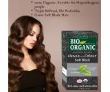 Prefer Indus Valley Bio Organic Herbal Henna Colour for Full Grey Coverage