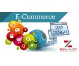 Affordable Ecommerce Website Designing Company