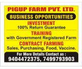 pigup farmming & services