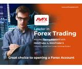 Why AVFX is the leader in forex trading?