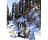 Trek Kedarkantha - Best snow Trek of India