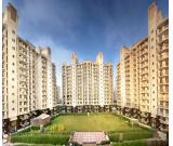 Luxury Apartments For Rent  | Property For Rent In Gurgaon