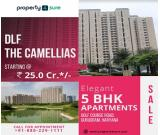 5 BHK Flat for Sale in DLF The Camellias | 5 BHK Apartment for Sale on Golf Course Road Gurugram