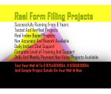 Form filling project simple copy paste work from home projects