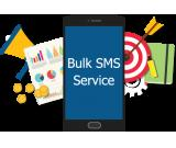 Bulk SMS Service Provider in Jaipur | No Wait, Fast Delivery Time