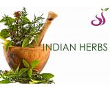 Best Indian herbs manufacturer and exporter