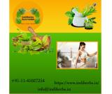 Herbal Natural supplements for weight loss