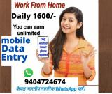 Data Input Jobs from Home