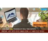 Best Pega Online Training Free live demo