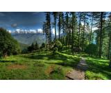 Adventure Camps in Dhanaulti – Dhanaulti Tour Packages