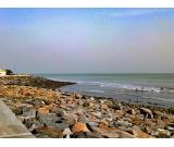 Get the Best Investment Guidance in the Coastal Areas of West Bengal
