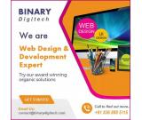 Professional Web Designing Company in India