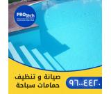 Swimming Pool Cleaning and Repair