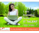 IT TALENT - Optimizing your IT Potential