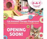 FIRST Cat-Assisted-Therapy Playground in Malaysia!