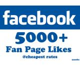 Affordable Social Media Marketing | SEO Services & FB Likes at very low prices in Karachi