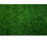 Buy Artificial Grass Carpet in Karachi | Best Artificial Grass Shop In Karachi