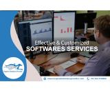 Effective and Customized Software Services