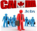 Hotel  Required Workers To Live And Work In Canada
