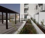 Brand New Studio with Big Terrace Apartment for Rent in Candace Aster, Al Furjan