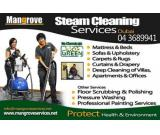 Professional Deep Steam Cleaning Services And Stem Sanitization in Dubai