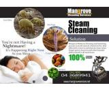 Move-in and Move-out Deep/Steam Cleaning Services