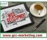 Custom Ecommerce Web Design & Development Services in Dubai – Call 0567300683