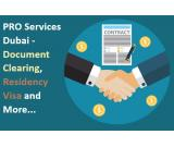 PRO SERVICE for Freelance Visa