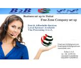 PRO SERVICES FOR ALL VISA AND COMPANY FORMATION BUSSINES SETUP