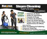 Drapes, Upholstery, Mattress, Carpet & Oven Steam Cleaning (Killing Viruses/Bacteria)