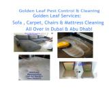 Furniture cleaning in Golden Leaf Pest Control