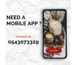 Mobile application at an affordable price